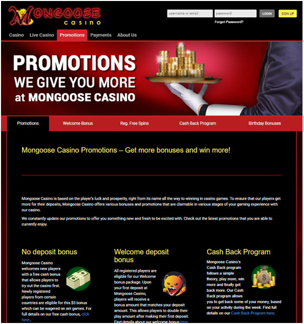 Mongoose casino bonus